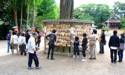 20080504muragaru