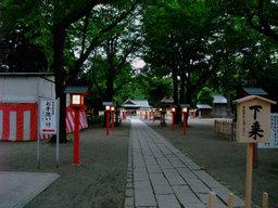 Washimiyayuugure