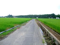 20080726gongendo