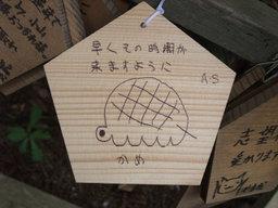 Sonojiki20080831