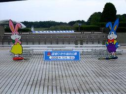 Hitachikaihinkouen200810