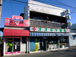 Oogiya20081130