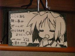 Yoshimizu2009