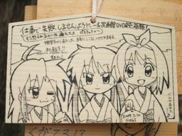 Sugi20090530