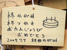 Hiiragishimai011