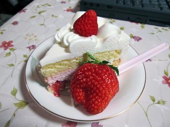Cake20100328