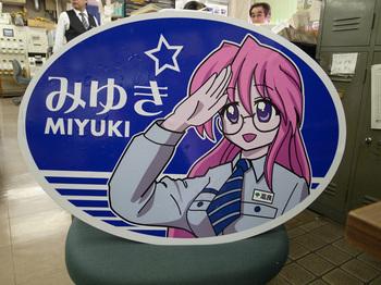 Miyukisanheamarksetup