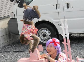 Cosplaysarumawashi20110904